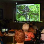 Prezentacja lemurów zamieszkujących Madagaskar